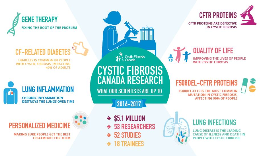 research paper on cystic fibrosis Read about the accomplishments of cystic fibrosis research, as well as what is  currently being conducted in the field.